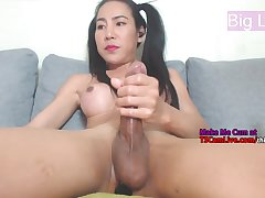 Asian Shemale Stroking her Big Cock on Webcam Live, Part 3